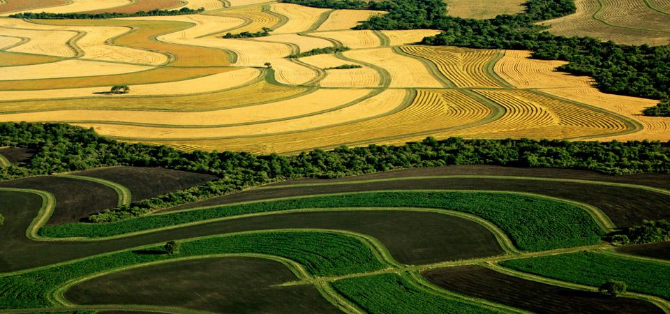 slide_ecological_agriculture_01