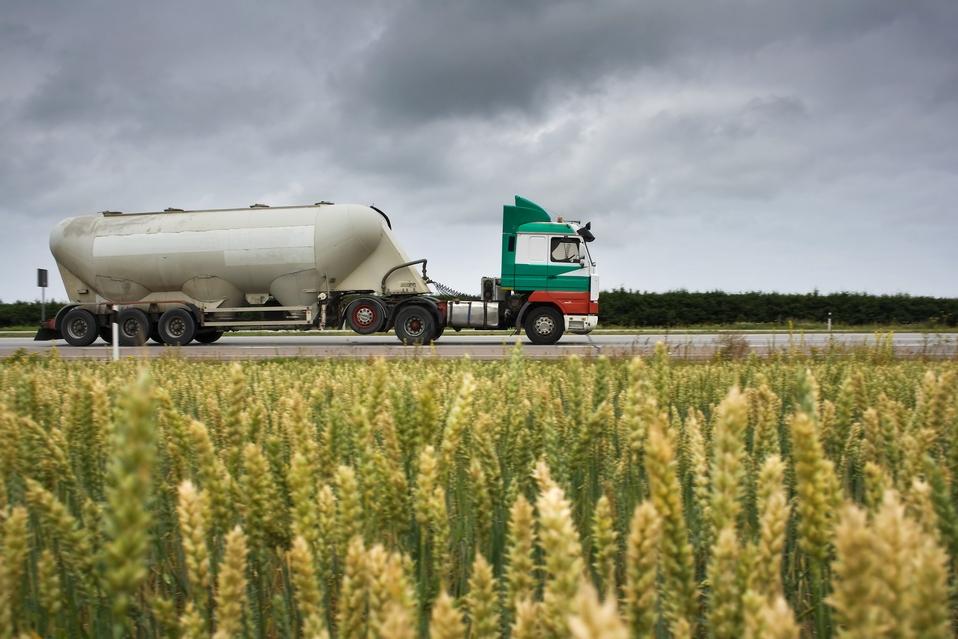 Китай, Ближний Восток, Африка — сегодня это наиболее перспективные направления для экспорта украинской аграрной продукции