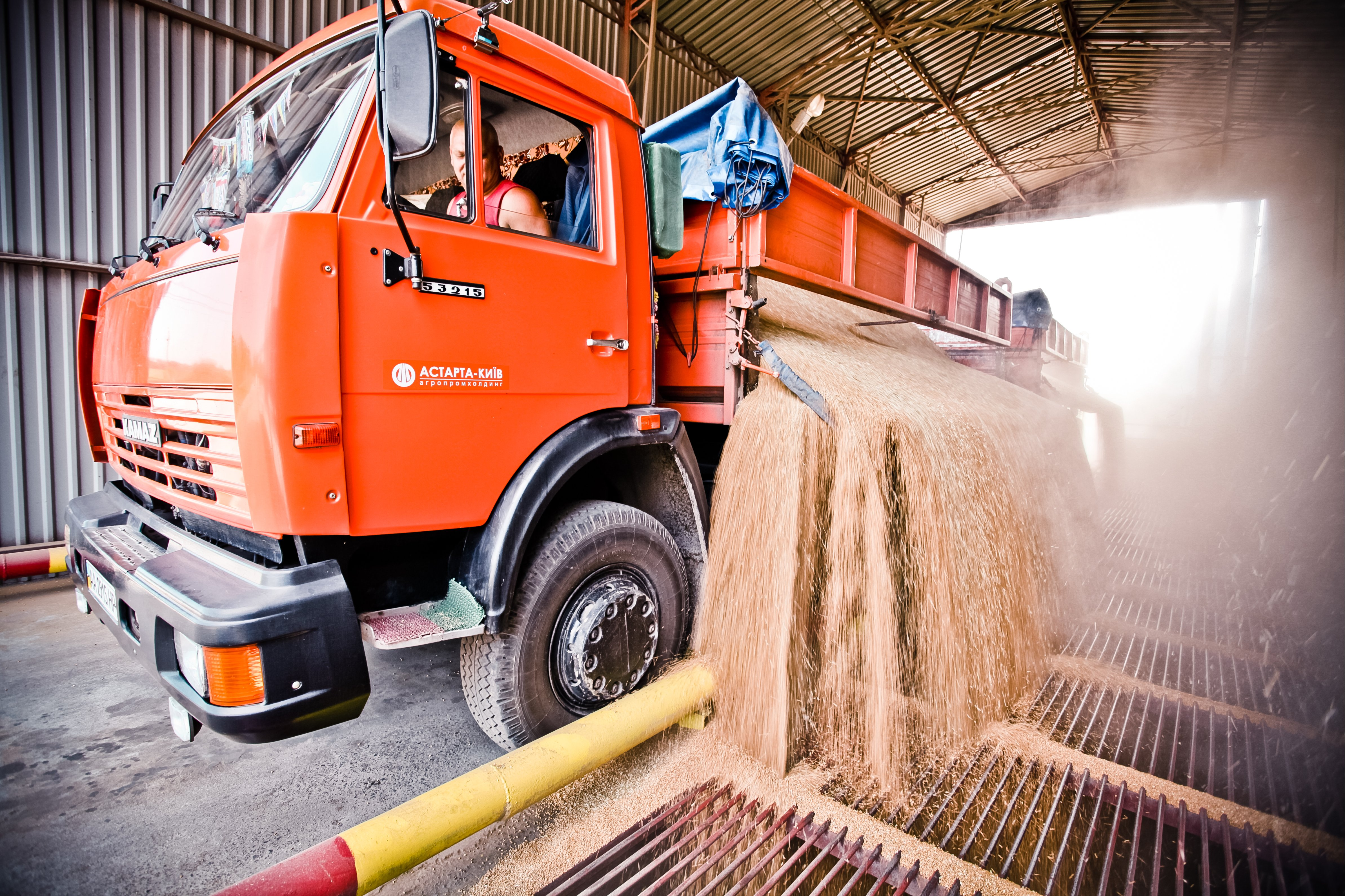 Молочное животноводство может стать четвертым направлением бизнеса Иванчика