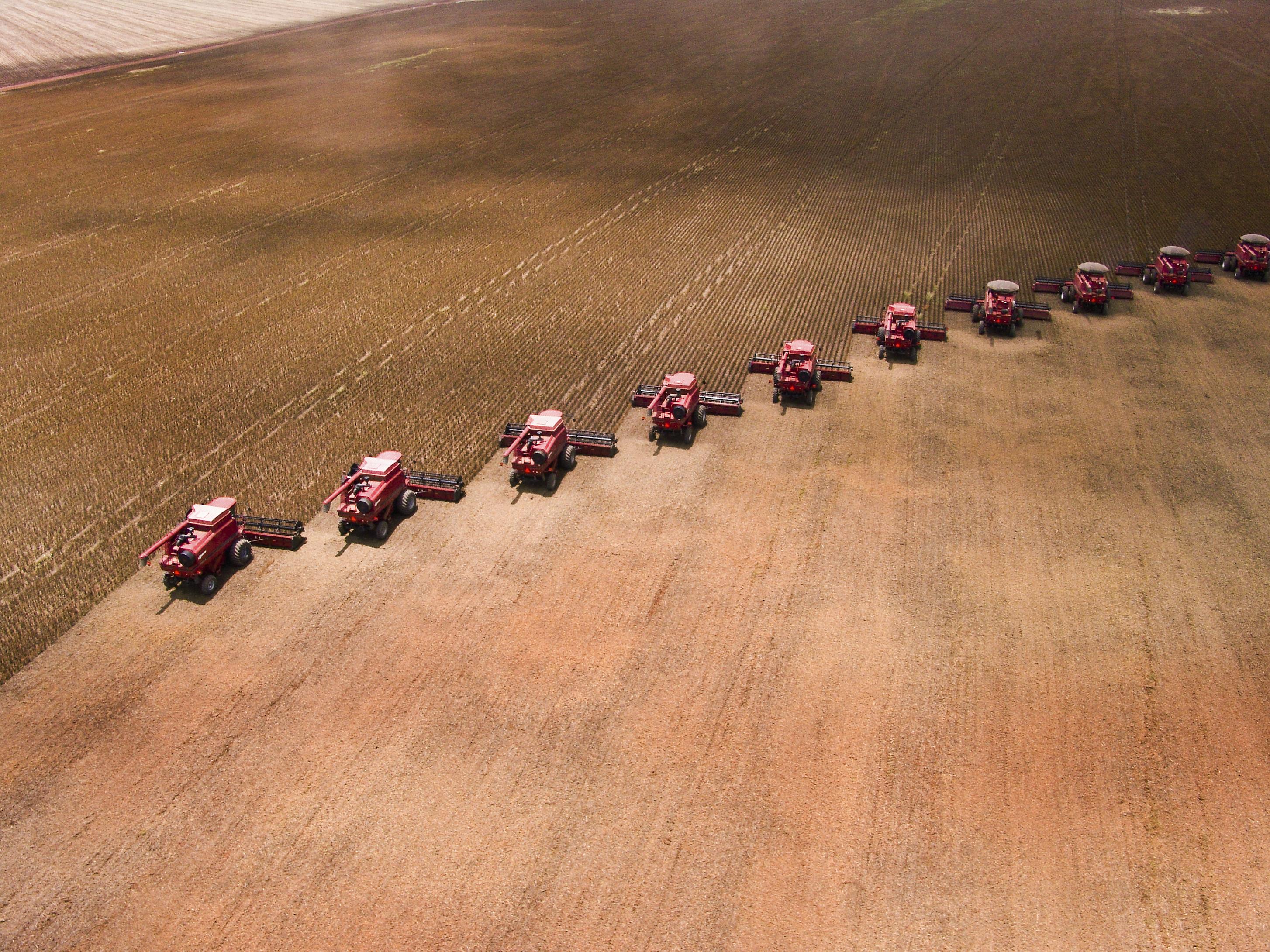 Холдинг Maggiфинансирует средних имелких фермеров всей Западной Бразилии