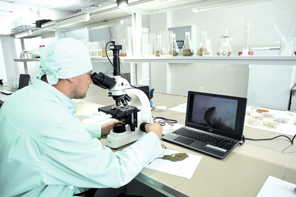 Сотрудникам Тодоров дал непростую задачу: создать более эффективные препараты, чем аналоги. Команда с ней успешно справилась