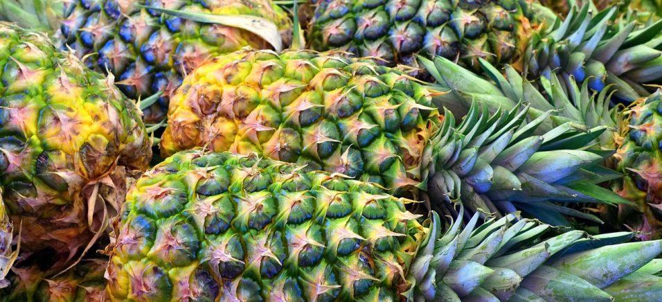 Кейс: ананас вагою 15 кг – фермер під Києвом виводить унікальні сорти фруктів