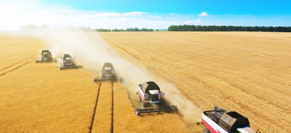 ТОП-10 агрохолдингів за розміром земельного банку