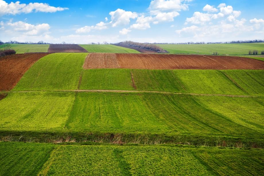 У тіньовому обробітку в Україні перебуває 8 млн. га. землі.