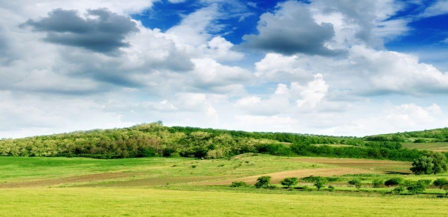 Хто розпоряджається земельними ділянками держвласності – можна бачити онлайн